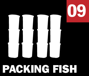 09 PACKING FISH