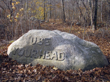 Use Your Head2